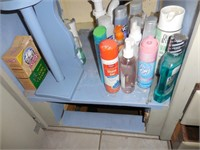 Contents of Bathroom: Pictures, Towels, Soaps