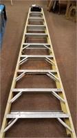 "Werner 10"" Fiberglass Ladder"