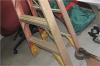 10' Werner Ladder