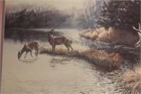 Framed Deer Print