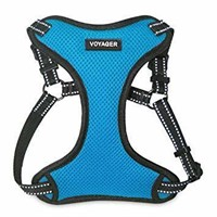 Best Pet Supplies Voyager, Fully Adjustable