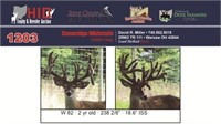 2017 Ohio Trophy And Breeder Auction