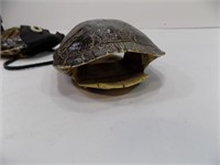 TURTLE SHELL POUCH AND 1 EMPTY SHELL