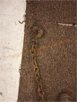 8-Foot Chain
