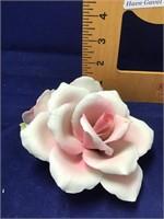 Capidamonte rose