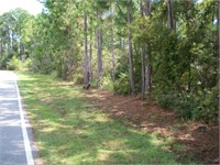 (10) 16797 INNERARITY POINT ROAD (Reserve $63945.00)