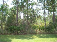 (11) 16795 INNERARITY POINT ROAD (Reserve $66150.00)