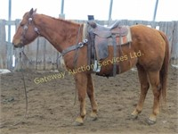 Gateway Spring Horse & Longhorn Auction 2017