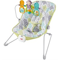 Fisher-Price Baby's Bouncer, Green/Blue/Grey