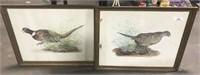 Framed Pheasant Art