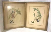 Matching Framed Bird Prints