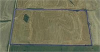 Smith County Land Auction