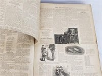 Antique 1882 The Youths Companion Newspapers