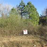 Roundhill Road - 6 Tracts - 161 Acres