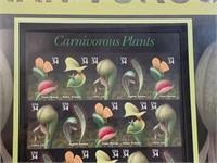 Framed Carnivorous Plants US Stamps