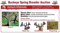 2017 Buckeye Spring Breeder Auction
