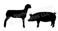 LIVE: Shiawassee Co. Jr. Livestock Assn. (Swine & Sheep)