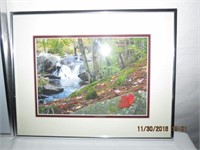 Collection of 3 framed photographs by Dan Boyce