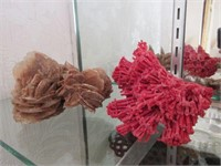 Lot of 3 Dried Coral Decorative Pieces