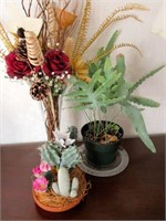 Lot of Decorative House Hold Plants