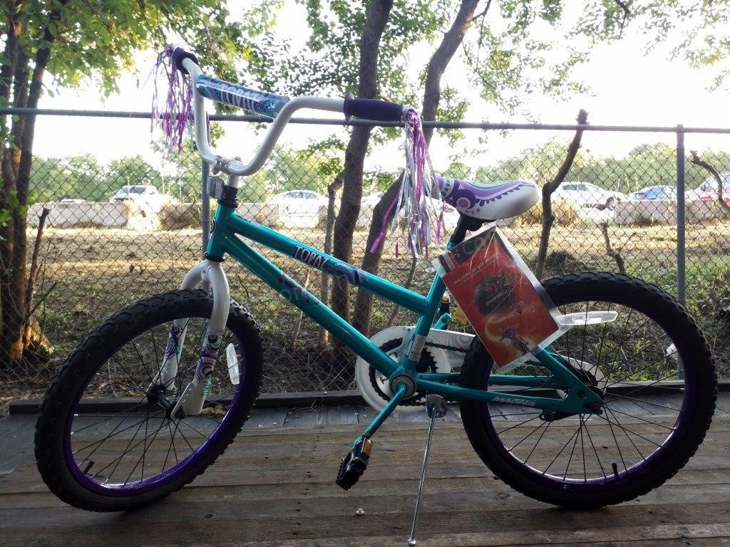 Dynacraft Topaz Girl's Bicycle | Auctions Unlimited