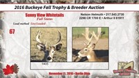 2016 Buckeye Fall Trophy Auction