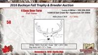 2016 Buckeye Fall Trophy Auction