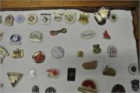 Collection of Souvenir Lapel Pins in Case