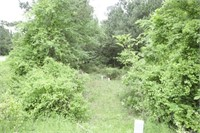 Hunting Land in Broken Bow Oklahoma