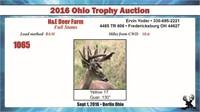 2016 Ohio Trophy & Breeder Auction
