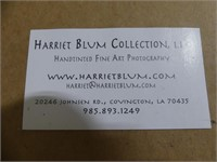 "HARRIET BLUM ""SHELTER"" HAND TINTED PHOTO"