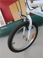TECHTEAM GIRL'S BICYCLE