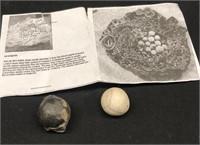 Aragonite Cave Pearls