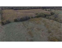 Test Land Auction