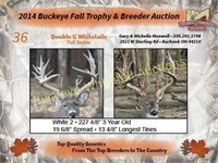 2015 Buckeye Fall Trophy Auction