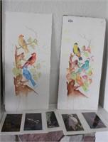 Brannon - Watercolor Bird Art + Bird Photography