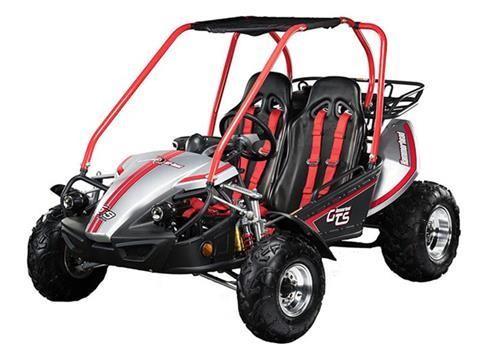HAMMERHEAD Go Karts For Sale - 22 Listings | MotorSportsUniverse com