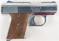 Gun Raven Arms P-25 Semi Auto Pistol in 25 ACP Sil