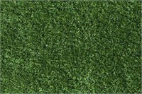 OUTDOOR GRASS TURF APROX. 5'X8'