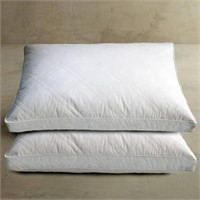TOTAL OF 2 PILLOWS GOOSE FEATHER AND DOWN