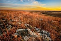 2015 Symphony in the Flint Hills Photography Auction