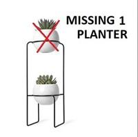 UMBRA PLANTER FOR SUCCULENT PLANTS