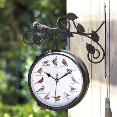 Mpes Outdoor Singing Bird Clock Thermometer For Sale 2