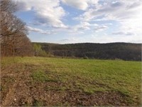 117 Acres - Allegany County Real Estate Auction