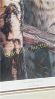 Online Moving Auction - Cody, WY