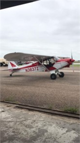 PIPER CUB Piston Single Aircraft For Sale - 14 Listings | Controller