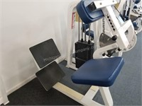 Icarian Back Extension Machine