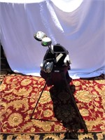 Titleist golf bag & assorted clubs