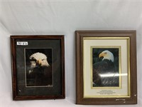 Wall Art - American Bald Eagle