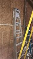 10' Werner step ladder & aluminum step ladder